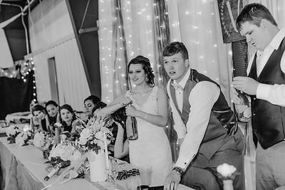 04208--©ADH Photography2017--MrAndMrsViox--Wedding