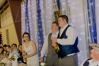 04217--©ADH Photography2017--MrAndMrsViox--Wedding