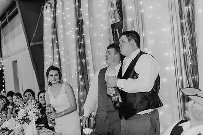 04218--©ADH Photography2017--MrAndMrsViox--Wedding
