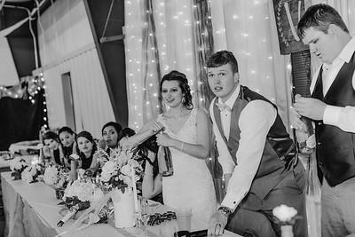 04210--©ADH Photography2017--MrAndMrsViox--Wedding
