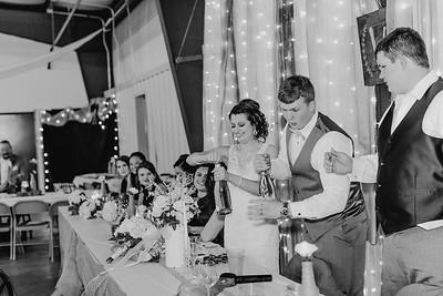 04200--©ADH Photography2017--MrAndMrsViox--Wedding