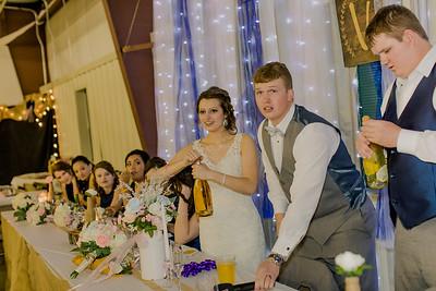 04209--©ADH Photography2017--MrAndMrsViox--Wedding