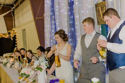 04203--©ADH Photography2017--MrAndMrsViox--Wedding