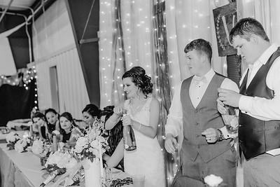 04204--©ADH Photography2017--MrAndMrsViox--Wedding