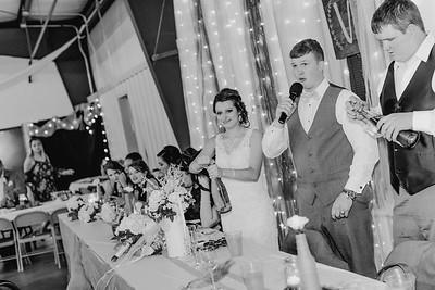 04216--©ADH Photography2017--MrAndMrsViox--Wedding