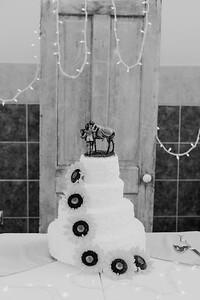 02864--©ADH Photography2017--DerekHollyVolker--Wedding