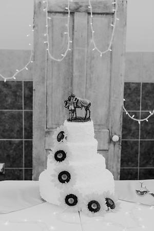 02866--©ADH Photography2017--DerekHollyVolker--Wedding