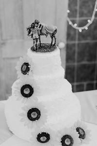 02870--©ADH Photography2017--DerekHollyVolker--Wedding