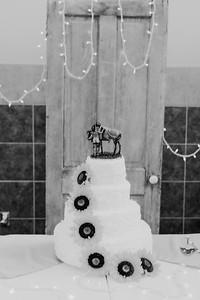 02868--©ADH Photography2017--DerekHollyVolker--Wedding