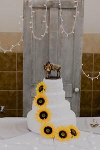 02867--©ADH Photography2017--DerekHollyVolker--Wedding