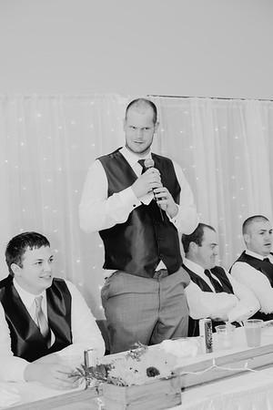 04524--©ADH Photography2017--DerekHollyVolker--Wedding