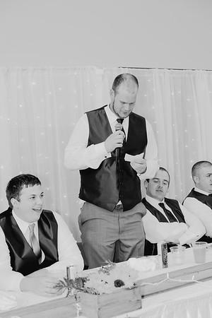 04520--©ADH Photography2017--DerekHollyVolker--Wedding