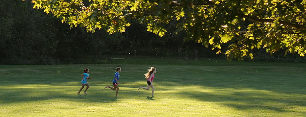 Children run in the park used for Joel & Nellie's Rehearsal