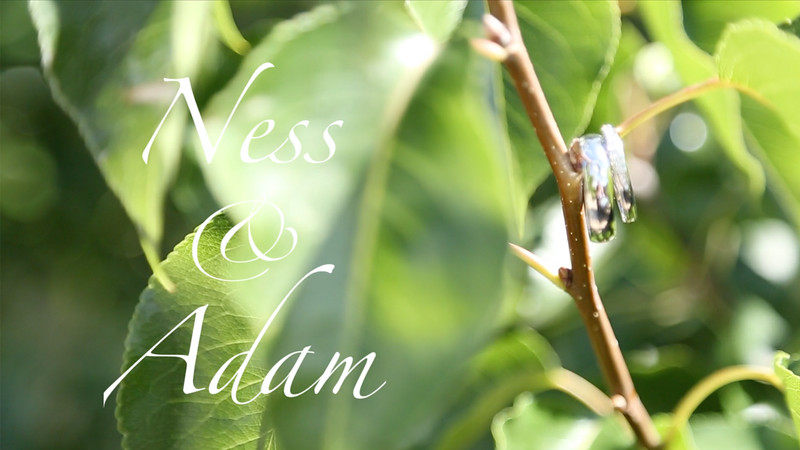 Ness & Adam - Wedding Day