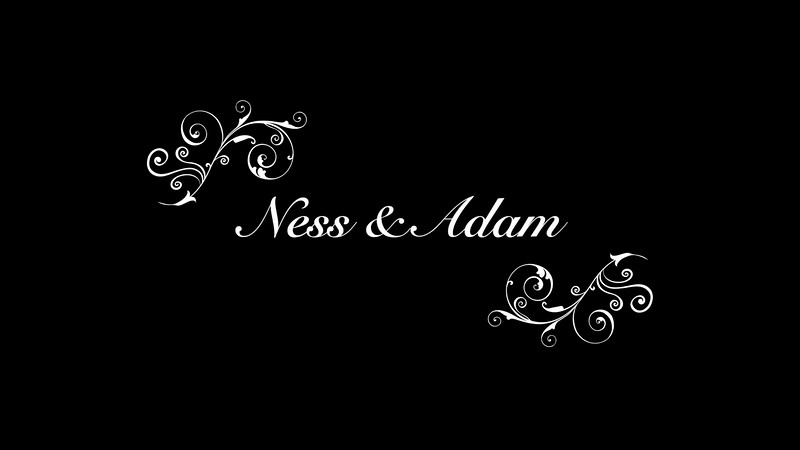Ness & Adam Wedding - Ness Condensed