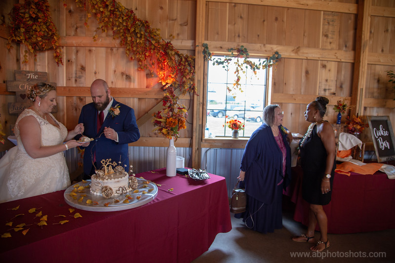 Wedding (926 of 1409)