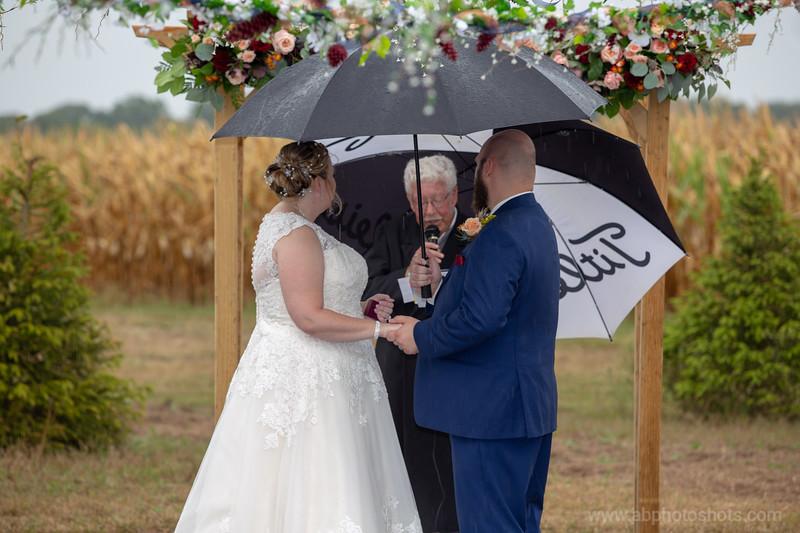 Wedding (650 of 1409)