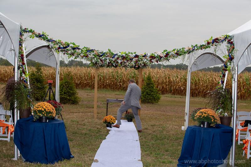 Wedding (487 of 1409)