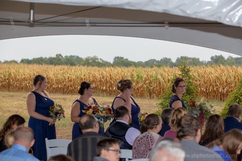 Wedding (651 of 1409)