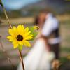 NZ-Wedding-FR-3205