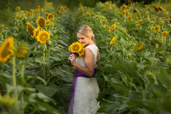 nicolesunflowers-5