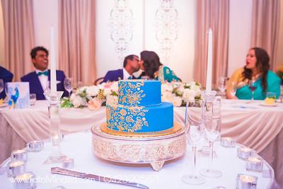 Nivi - Dinesh Wedding Reception