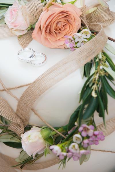 ODonnell Wedding 2017_ (5)