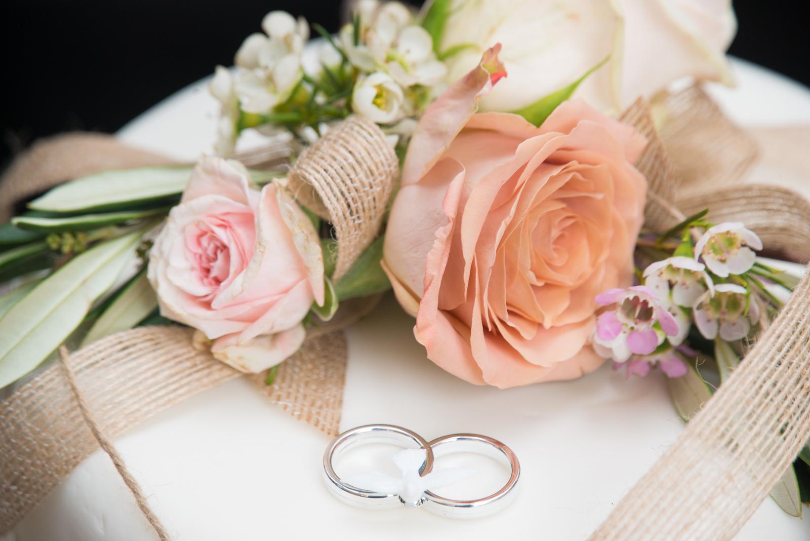 ODonnell Wedding 2017_ (7)