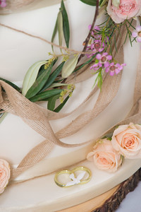 ODonnell Wedding 2017_ (8)