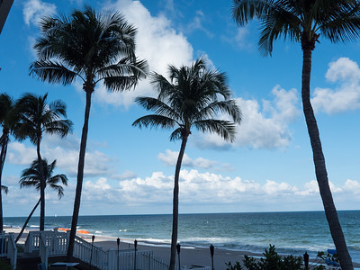 The view. The fabulous view. From the back porch of the Pelican Grand Beach Resort in Fort Lauderdale.
