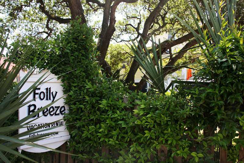Palmetto Breeze on Folly 004