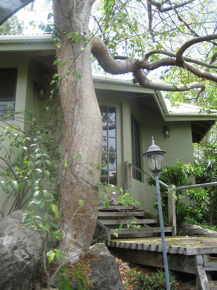 "this was our villa, ""Treehouse"""