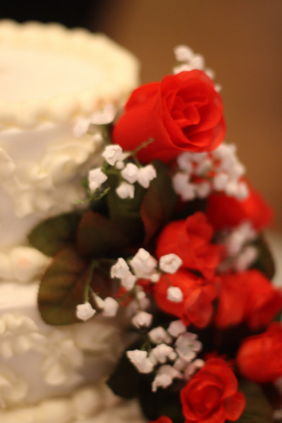These red flowers ornamented the wedding cake.