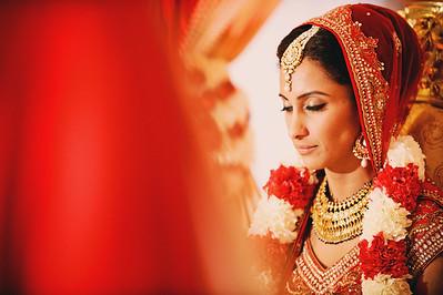 Puja + Eric - Wedding & Reception