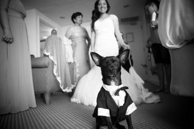 Andrea and Philippe Hyatt Regency Pier 66 Wedding Photos-196