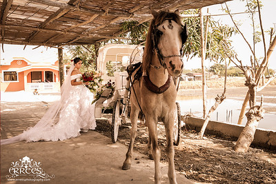 Bridal Car with the Bride
