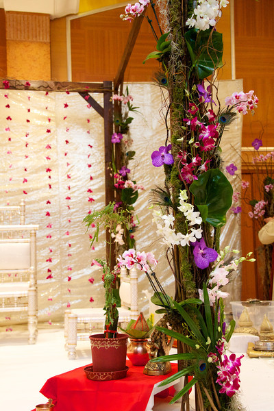 Hindu Ceremony 6