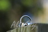 WEDDING-102317_0588