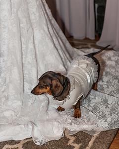 9-30-17 wedding-29