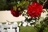 RachelBobby-WeddingDay-FR-2724