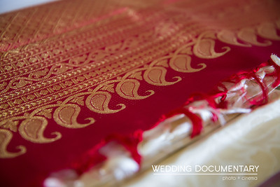 Rajul_Samir_Wedding-21