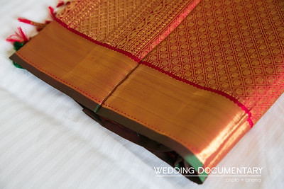 Rajul_Samir_Wedding-24
