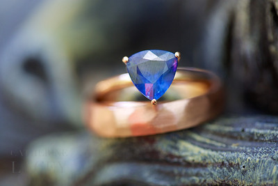 Los-Angeles-Wedding-Photographer-Catherine-Lacey-Photography-Rings-001