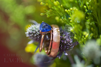 Los-Angeles-Wedding-Photographer-Catherine-Lacey-Photography-Rings-002