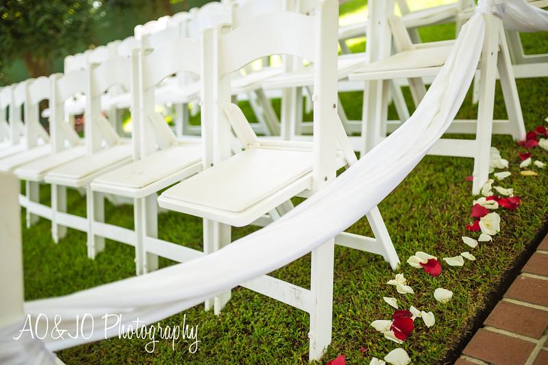 AOJOPhotography (Raleigh, NC Wedding Photographer)-2