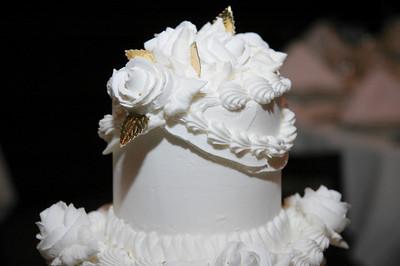 Williams Wedding 3 21 09 (4)