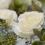 Wedding_Renee_Nick_0937