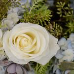 Wedding_Renee_Nick_0929