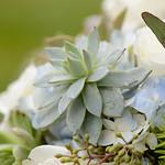 Wedding_Renee_Nick_0941