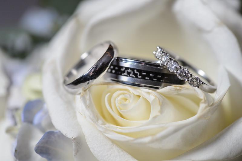 Wedding_Renee_Nick_3287